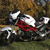 ducatimonster695 15